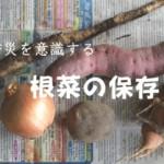 防災意識した保存(1)日持ちする野菜をローリングストック法で備える